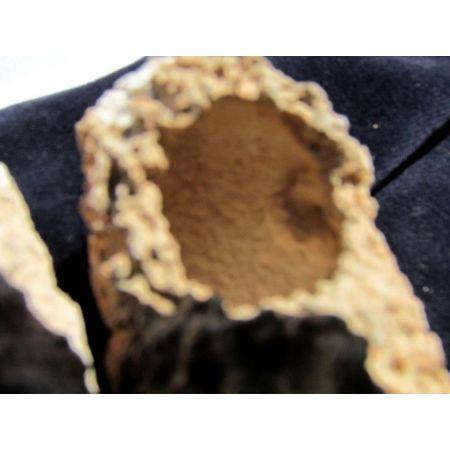 Angelshoes, Engelsschuh-Paar