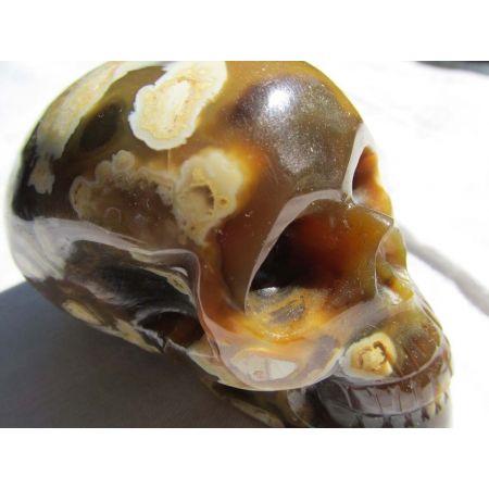 Gelber Opal-Energie-Schädel