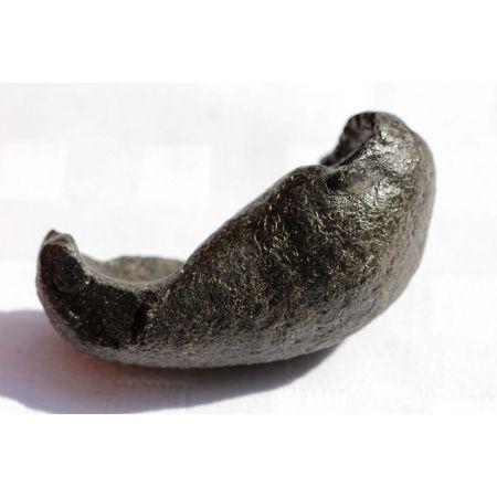 Wal-Ohr-Knochen - Der Geist des Wales spricht -