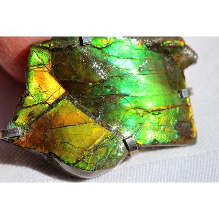 Opaleszierender Ammonit `PLACENTICERAS` (Stein für Mutter und Kind)