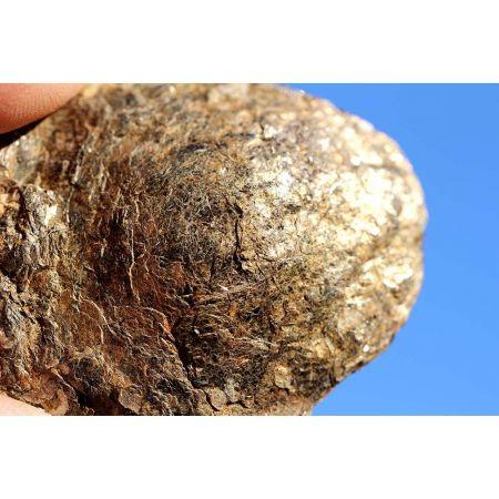 Biotitlinse, mittel, braun-gold